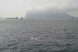 Gibraltar Algeciras